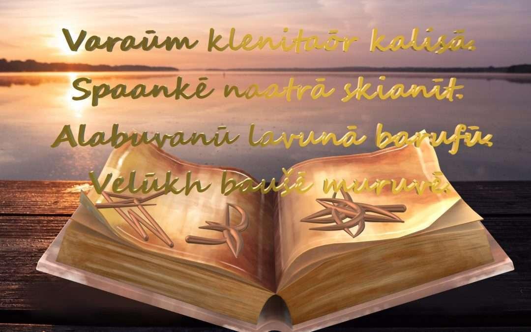 VISUMA BIBLIOTĒKAS